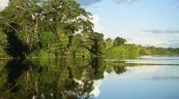 Amazonia corazon del mundo1