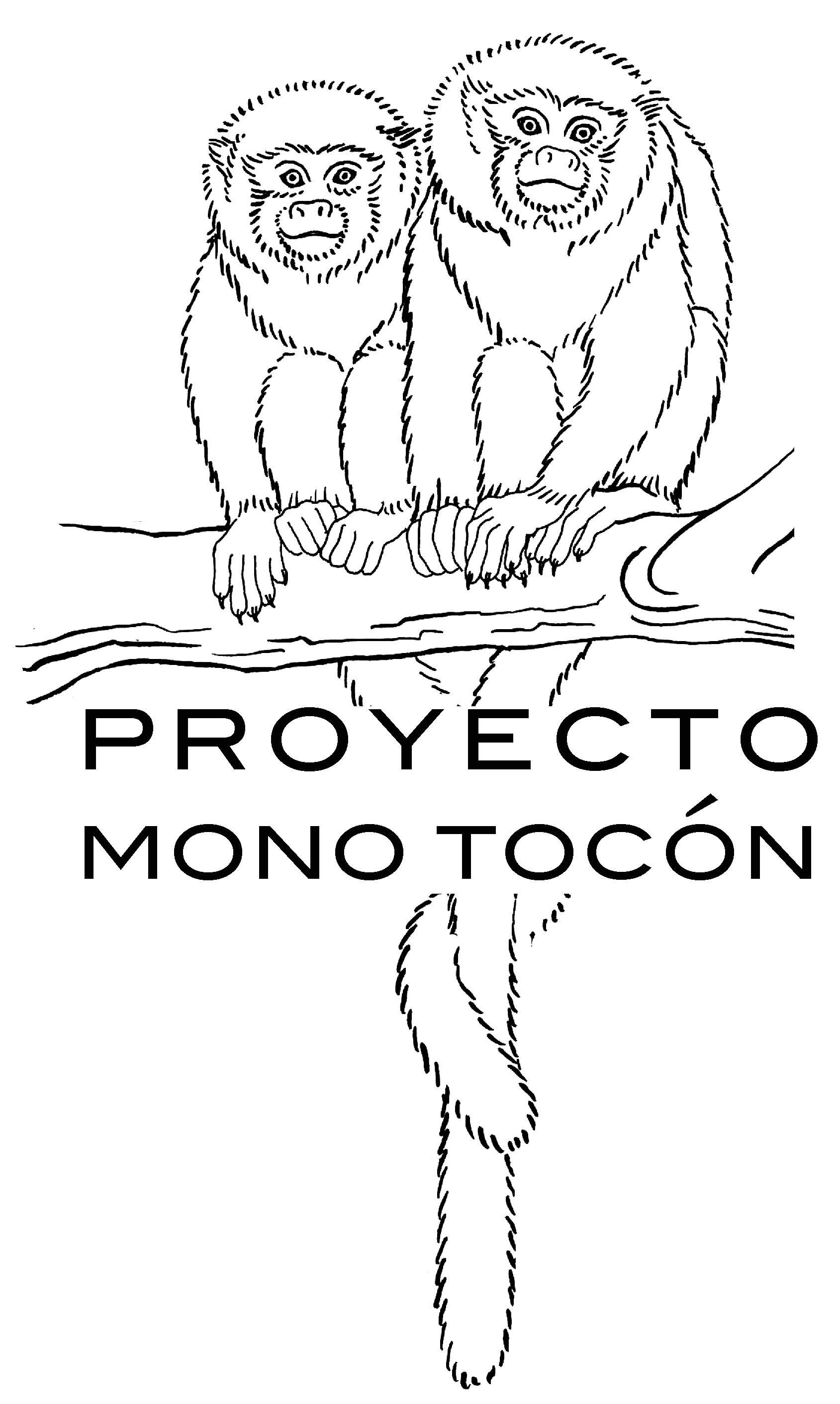 Proyecto mono tocón