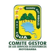 Comité gestor de los servicios económicos de Moyobamba