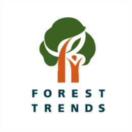 Forest Trends – Katoomba