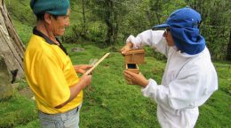 Consolidation of the participatory management of the Alto Huayabamba Conservation Concession
