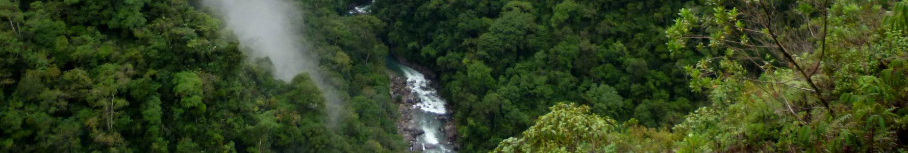 El Quinillal ya es un área de Concesión para Conservación
