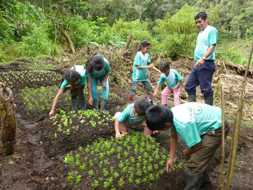 nuestra historia-niños nuevo bolivar