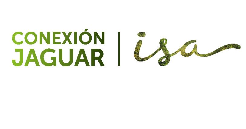 Conexión Jaguar